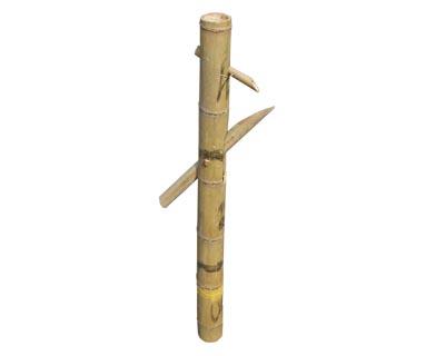 Index of /img/bambus